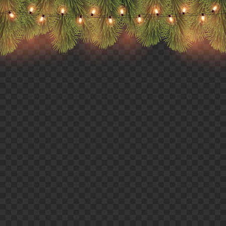 Glowing lights with branches of pine on transparent background. Vector illustration
