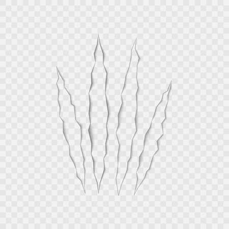 Craft of claws scratches on transparent background. Vector. 向量圖像