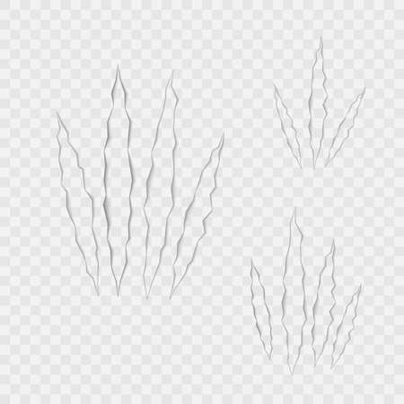 Craft of claws scratches on transparent background. Vector. 版權商用圖片 - 147917845