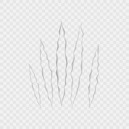 Craft of claws scratches on transparent background. Vector. 版權商用圖片 - 147917847