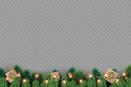Christmas tree branches on transparent background. Vector.