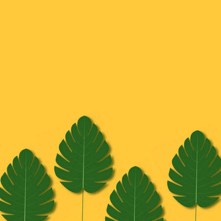 Summer background with palm tree leaves. Vector.