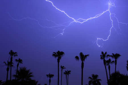 Tropical  Lightning Thunder Storm, with palm trees and blue night sky. Stock Photo - 3353624