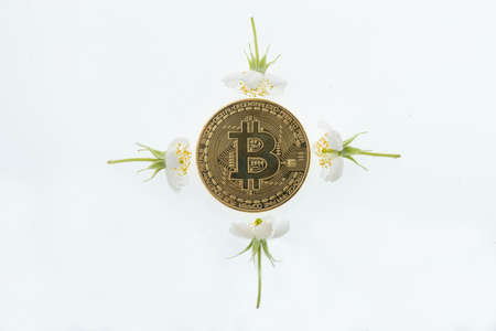 Bitcoin & cryptocurrency isolated on white background Stock Photo