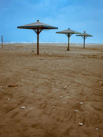 Row of canopies at the beach