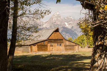 This rustic cabin is framed between stately trees with mountains rising in the background near Yellowstone National Park.