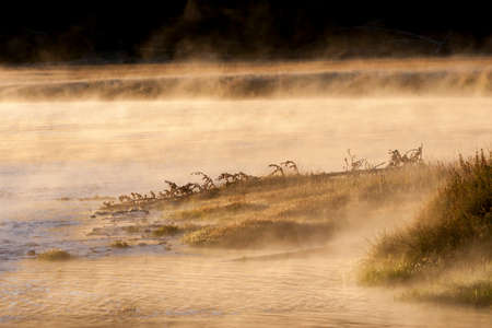 Fog, combined with the early morning sun, provides a mystical view of this river in Yellowstone National park. Reklamní fotografie
