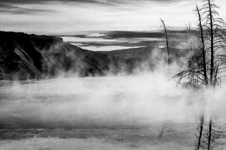Otherworldly feeling seeing the steam rising from the geyser pools at Yellowstone National Park amongst the dead trees. Rendered in black & white to maximize effect.