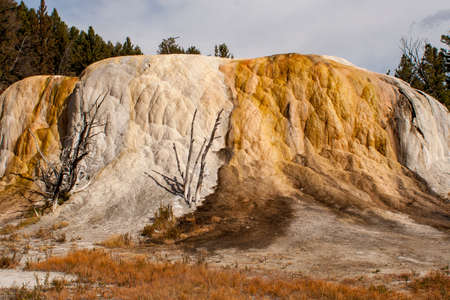Minerals spewed from geothermal feature form this mound in Yellowstone National Park.