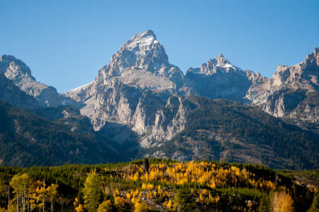 Golden aspen fronting snow-capped rugged mountains near Yelloowstone National Park Banco de Imagens