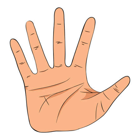 Hand showing five count, high five sign. Vector illustration. Hand collection.