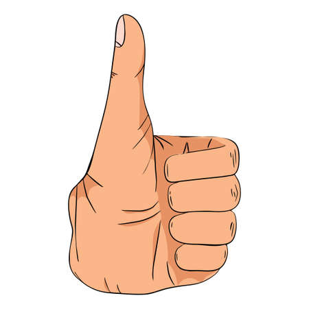 Hand sign showing good sign - vector illustration. Hand collection.
