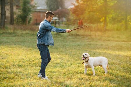 Guy throws a stick to his dog Labrador in park