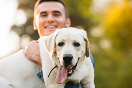 Guy holding his friend dog labrador and smiling at sunset Banco de Imagens