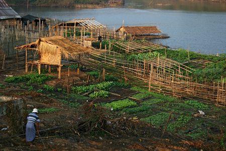 Birmese vluchtelingen werken in het Mon Village in de buurt van Sangkhlaburi, Thailand.  Stockfoto