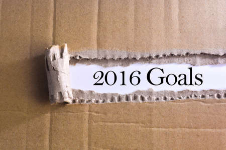 torn paper with word 2016 goals