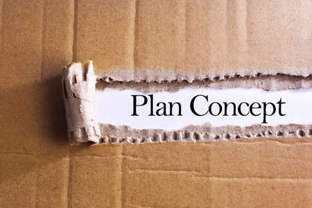 formulation: Torn paper box with word Plan concept