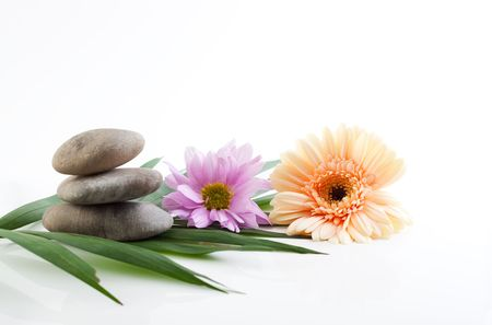 mental object: A spa theme still life with river stones and flowers, isolated on white with reflections