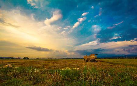 Puesta del sol y la vista padi campo Foto de archivo