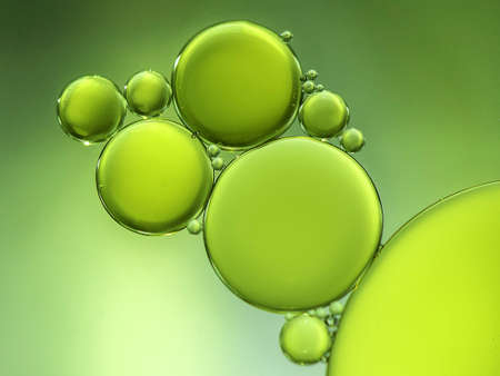 Oil drops on water forming circles