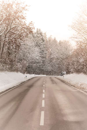 median: Sunny winter road with wonderful white snow covered forest trees. The country street is wet and has a curcve in warm colors.
