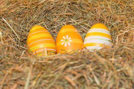 Easternest basket tradition yellow hidden easter eggs to search. Traditional easter holiday festival celebration with three orange eggs in hay straw in warm spring colors. Beautiful present symbol. Reklamní fotografie