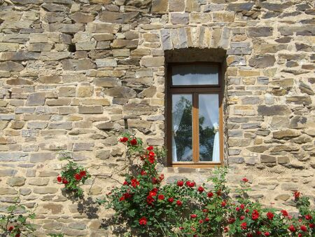 stone walls: Window with rose bush Stock Photo