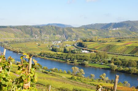 Reil Moselle valley in the fall and Perich photo
