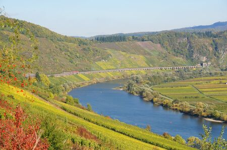 Moselle Valley in the fall Perich photo