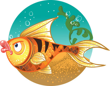 gold fish: Gold Fish with striped tiger