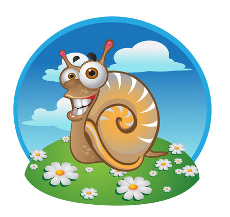animal idiot: snail on the color background