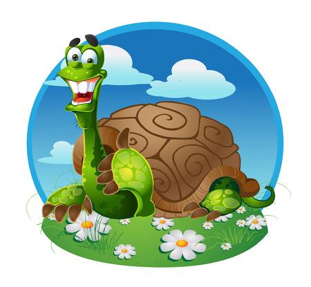 piebald: turtle on color background
