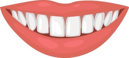 dientes caricatura: una hermosa sonrisa con dientes sanos Vectores