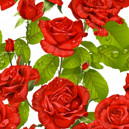 rosebud: Luxury seamless pattern of red roses on a white background Illustration