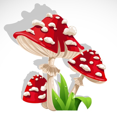 Red fresh Mushroom amanita in grass. Vector