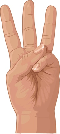knuckle: three from fingers Illustration