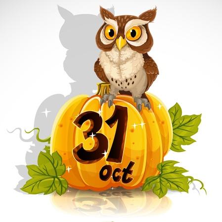 Búho sabio sentado en una calabaza - Halloween Party 31 de octubre