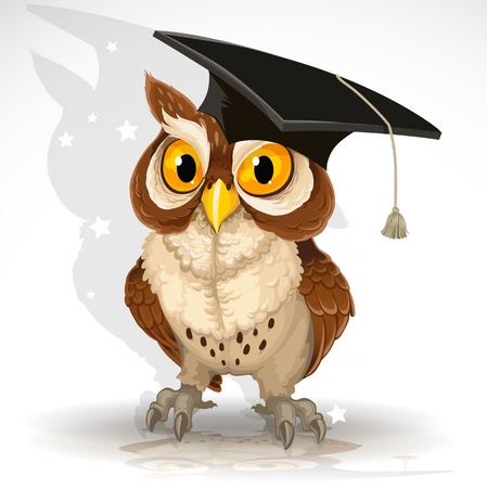 owl on branch: wise owl in the cap of the graduate