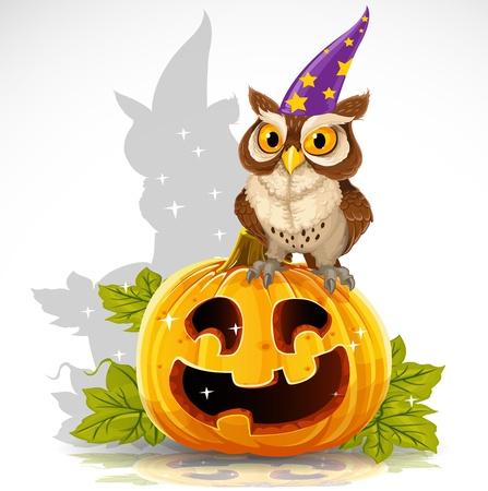 Wise tovenaar uil zit op een pompoen - Halloween symbool Jack