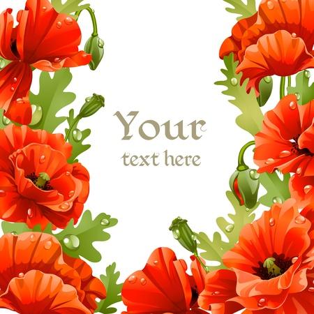 pfingstrosen: Rahmung der rote Mohn f�r Ihren Text