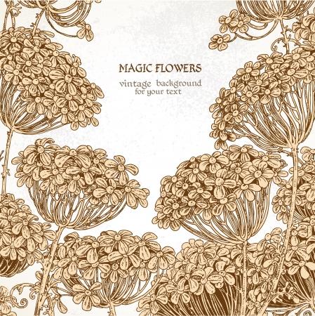 Beautiful wild flowers - umbrellas vintage background Stock Vector - 17325322