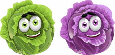 beet: Head of fun purple and green cabbage  Illustration