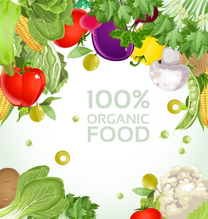Vegetarian vegetable 100  organic food background Stock Vector - 17525274