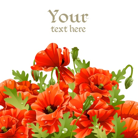oldened: Beautiful banner with red poppies for your message