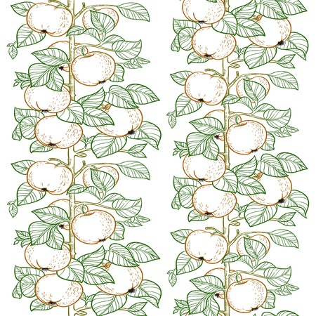 docking: Seamless line pattern of the branches of the apple trees with apples Illustration