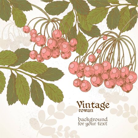 Vintage grunge rowan color backround for your text Stock Vector - 18115733