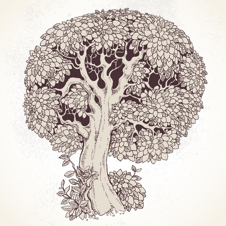 punctuation: Magic old tree with big magnificent crown on vintage background