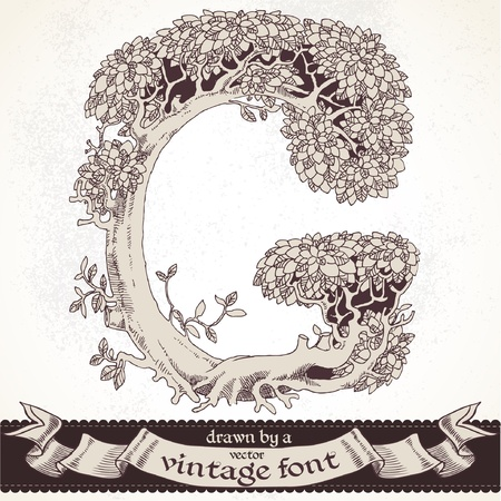 graphically: magic forest hand drawn by a vintage font - G
