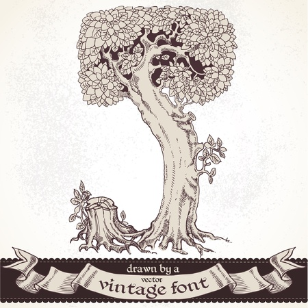 graphically: magic forest hand drawn by a vintage font - J
