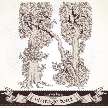 magic forest hand drawn by a vintage font - N Vector